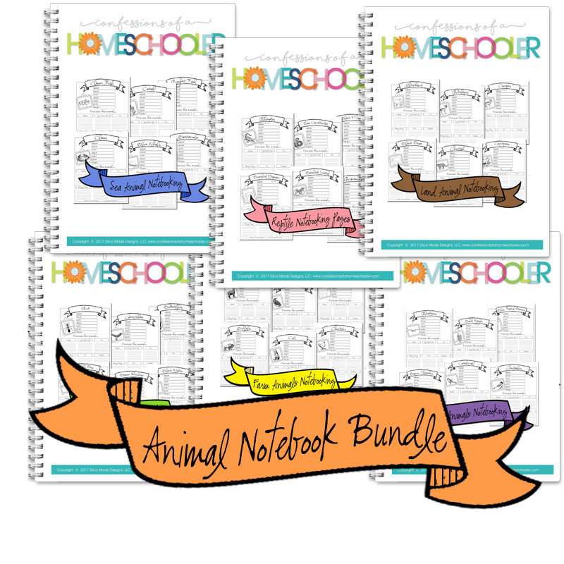 Animal Notebooking Pages Bundle - PDF